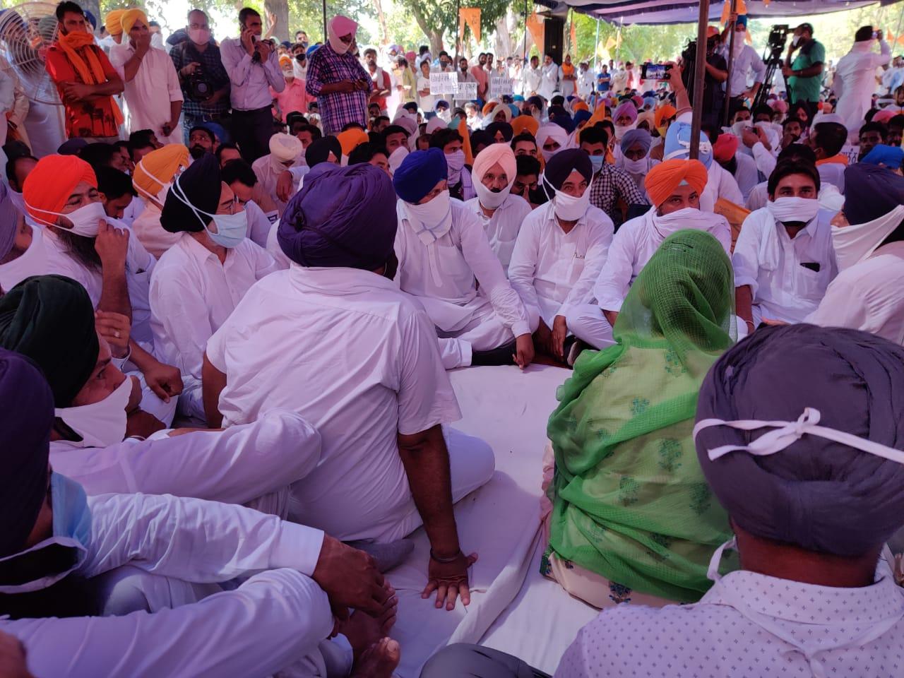 Rashtriya Kisan Manch says farm Bills will benefit farmers, opposes bandh call