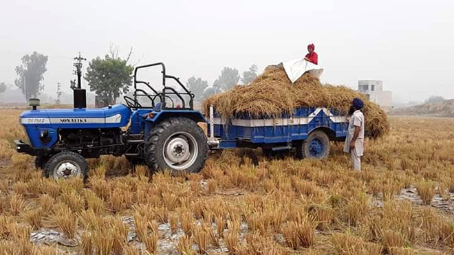 Setting example: Man, daughter use stubble as fodder for livestock