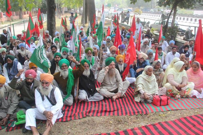 Farmer unions hold protest, demand withdrawal of stubble burning cases