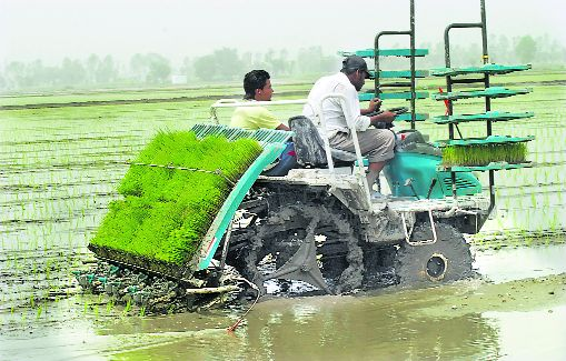 Co-op farming can reduce production costs