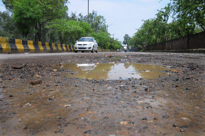 Tattered Guru Nanak Pura road trouble for motorists