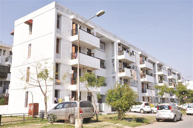 Chandigarh allows transfer of residential properties