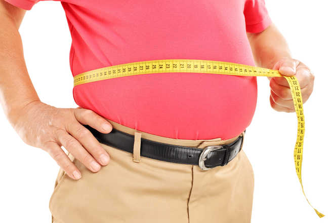 New drug target may help prevent, reverse obesity