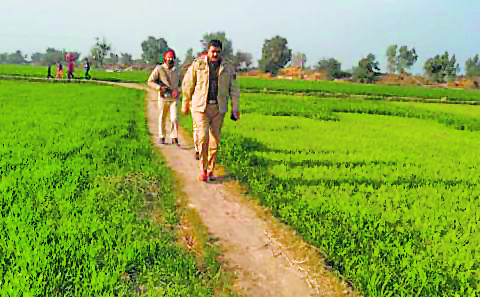 'Drones' sighted along border, BSF opens fire