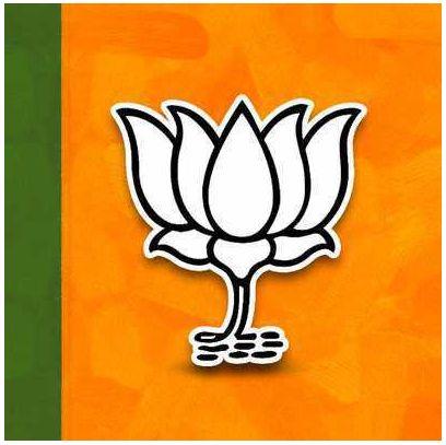BJP's regional allies seek to expand base in Delhi