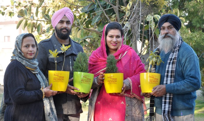 Amritsar couple sends out green invites for son's wedding