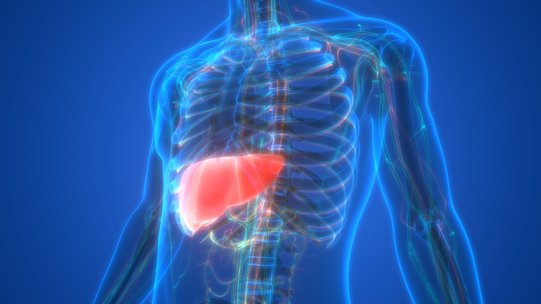 Even mild fatty liver disease may up death risk