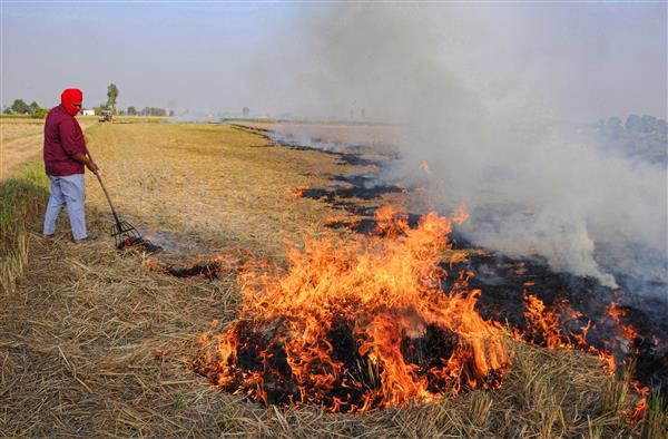 Kejriwal to launch spraying of anti-stubble burning solution on Tuesday