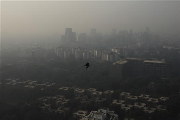 Marginal improvement in Delhi's AQI as wind speed picks up