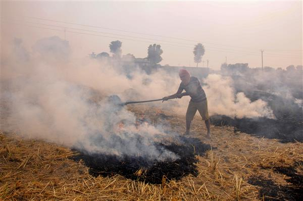 SC doing its part to deal with stubble burning, Centre and states have to do theirs: Delhi HC