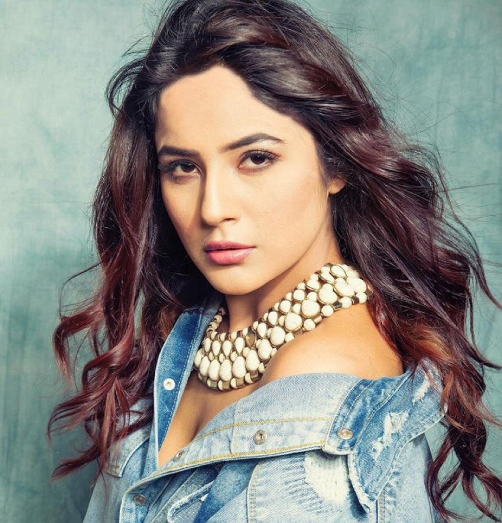 Shehnaaz Gill would only enter the Bigg Boss house under this condition