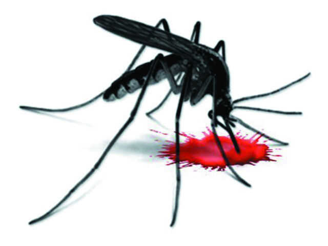 7-day-old baby tests positive for dengue at Jalandhar's PIMS