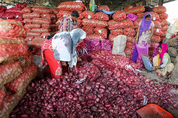 Export of onion seeds banned with immediate effect: DGFT notification