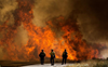 2 wildfires in Colorado could merge, warns experts