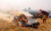 Kejriwal seeks monthly meetings with CMs of Haryana, UP, Punjab to curb air pollution