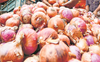 Will import potato, onion: Consumer Affairs Minister Piyush Goyal
