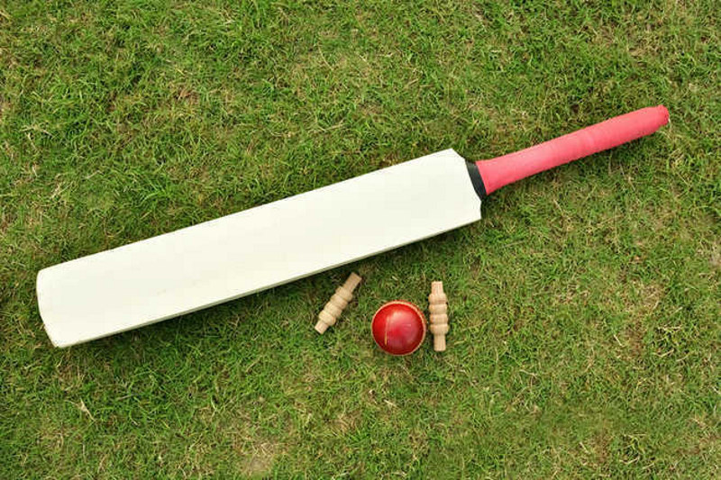 Ludhiana District Cricket association office-bearers booked for 'fraudulent activities'