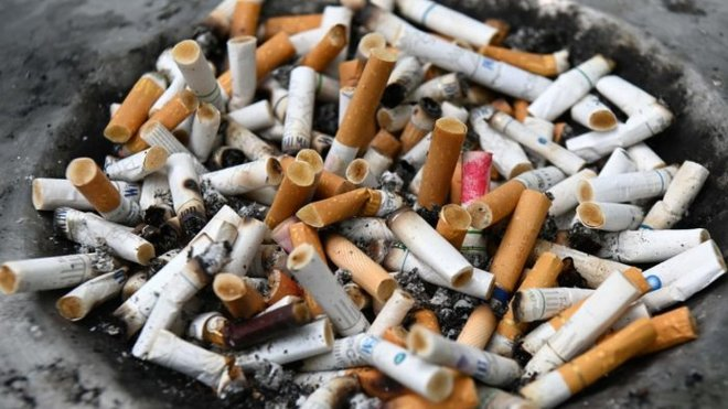 Govt told to frame norms on disposal of cigarette butts