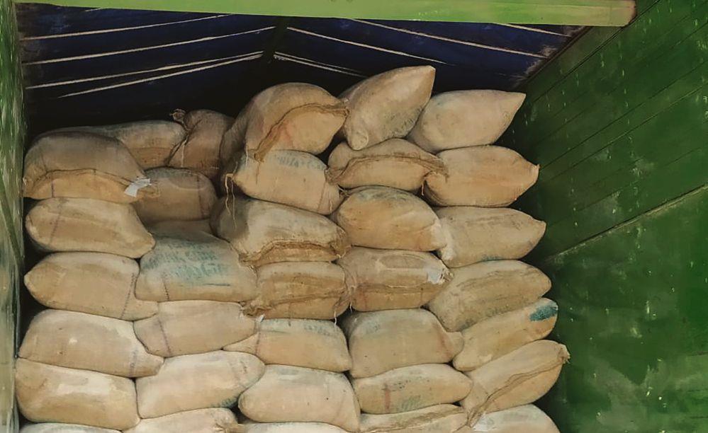 SAD, AAP seek probe into flour 'dumping'