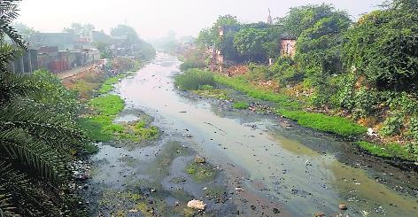 Admn to spend Rs208.33 crore on Chhoti Nadi, Badi Nadi revamp
