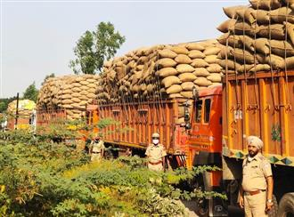Crackdown on illegal transportation of paddy in Punjab