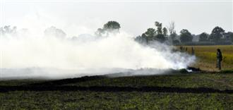 Spike in farm fires in Punjab to worsen air quality in border districts