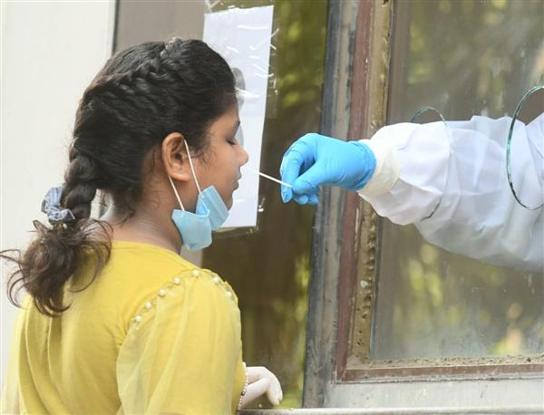 COVID-19: 3.7 lakh surveyed in Delhi, first time RT-PCR tests more than antigen tests