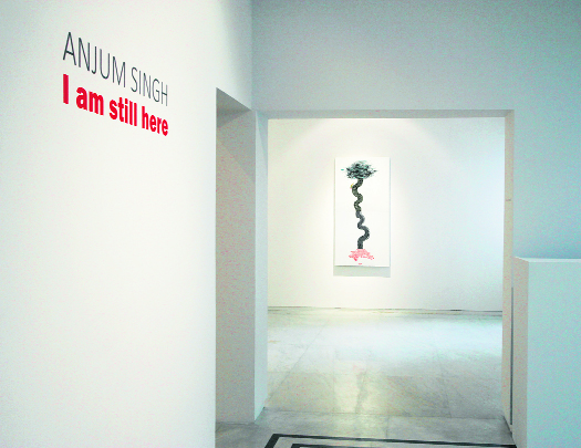 Artist Anjum Singh's final works were an expression of her battle with cancer