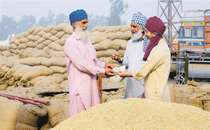 Collective push can help farmers hold firm