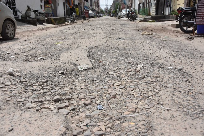 Repair potholes: NGO to Ludhiana MC