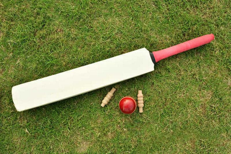 Champions Cricket Academy log victory