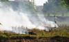 Stubble burning up 44% in Haryana