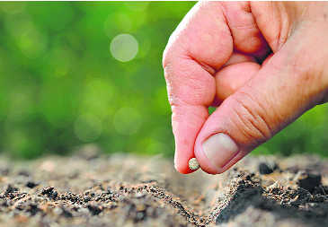 Farmers get tips on retaining soil health : The Tribune India