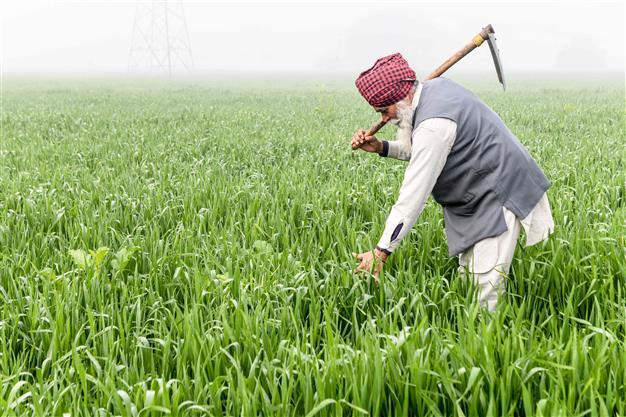 Govt proposes 11pc hike in farm credit; announces Krishi Udaan, Kisan Rail