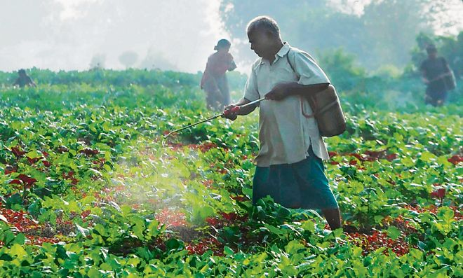Sparing use of pesticides the way forward