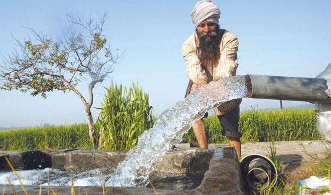Water consumption cut to half, 175 Doaba farmers reap benefit