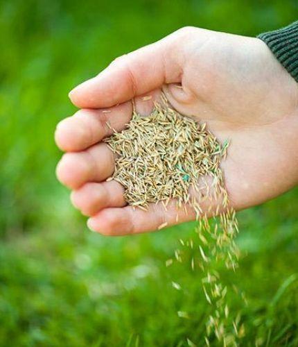 Coop societies providing seeds, fertilisers to farmers