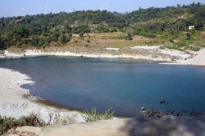 Wildlife Department to study lockdown impact on ecology