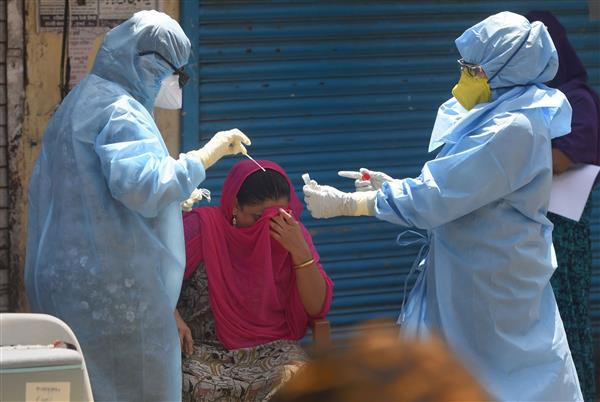 Jalandhar reports three more COVID-19 cases