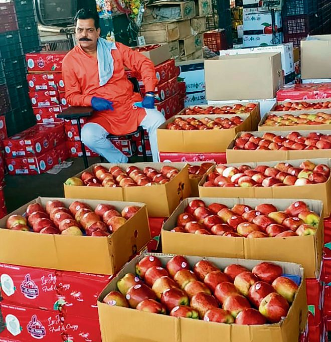 At subsidised rates, fruit dealers expecting hike in sales