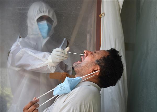 25 new coronavirus cases in Himachal, count now 586