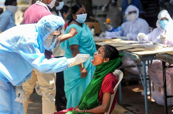 With 41 new COVID-19 cases, Punjab's tally reaches 2,342
