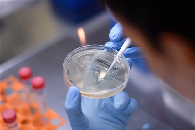 Drug controller approves Phase 1, 2 trials of India's first COVID-19 vaccine candidate