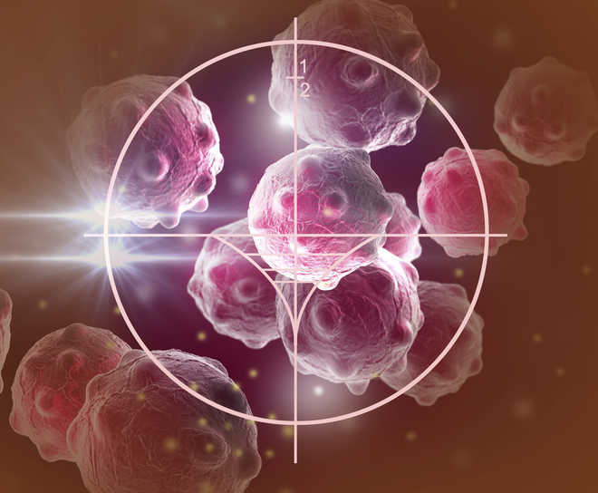 INST synthesises compound for anti-cancer and anti-tumour applications