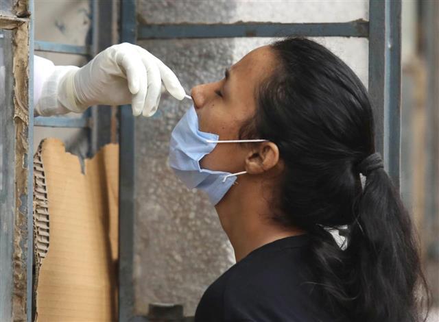 Coronavirus: Chandigarh reports 5 new cases, tally rises to 439