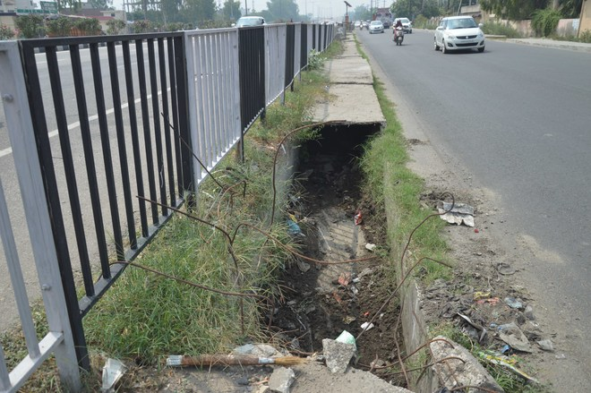 Choked storm water drains cry for attention in Ludhiana