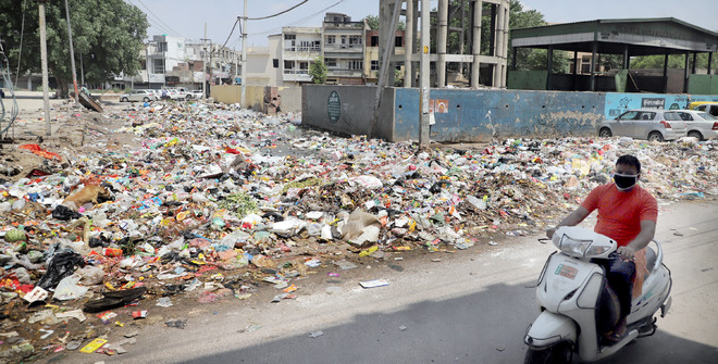 Garbage dots roadsides as Jalandhar MC fails to pay dues to firm