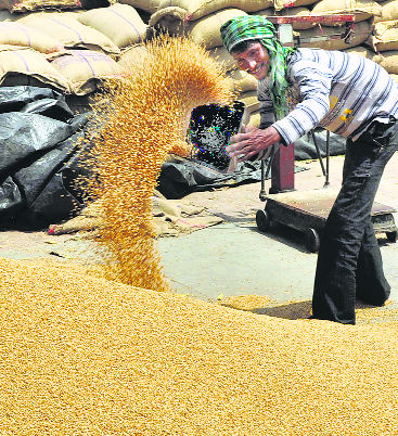 Crop purchase date extended