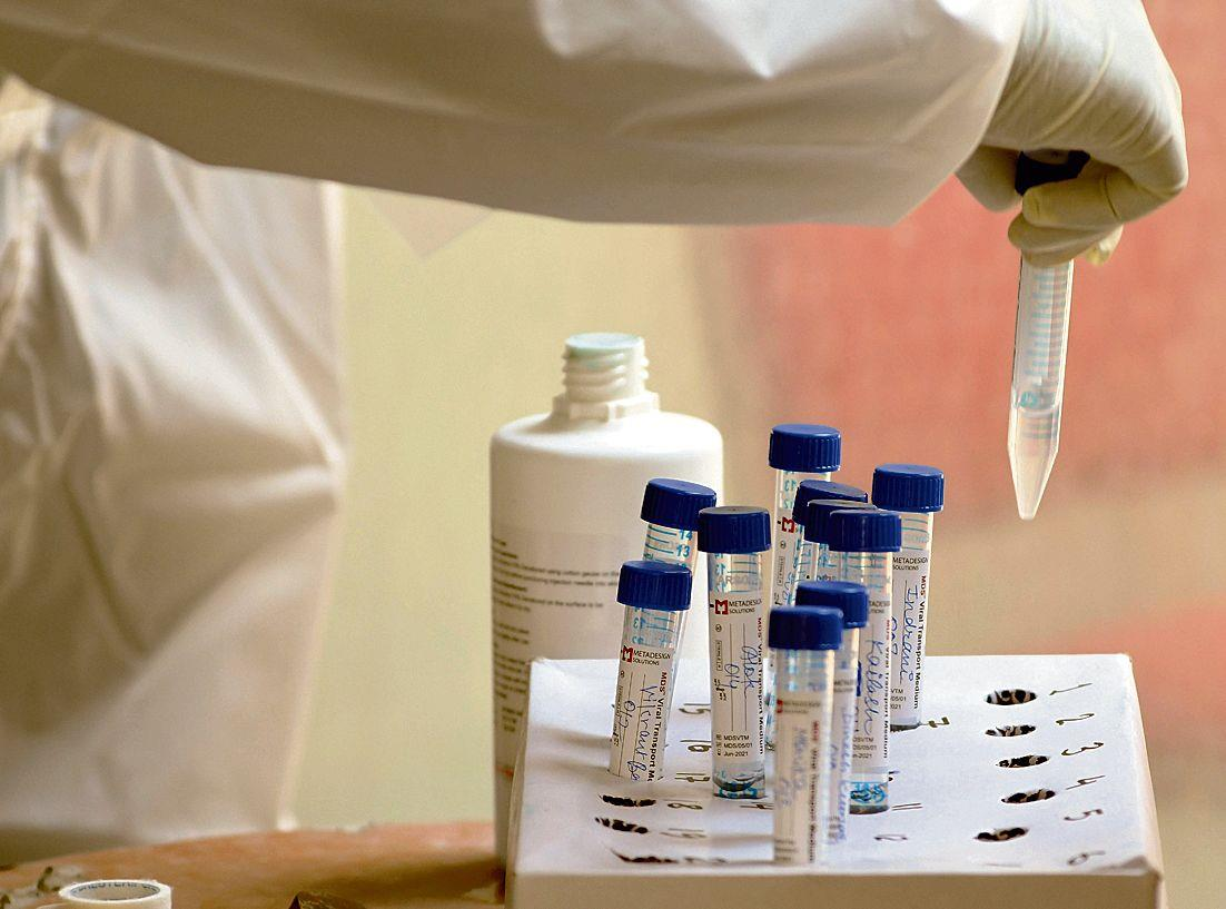 Panchkula doc, 76-year-old woman found infected