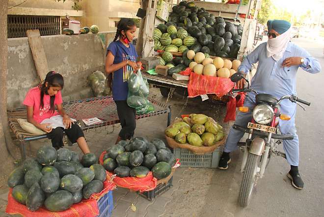 Sisters sell fruit on roadside to support ailing father